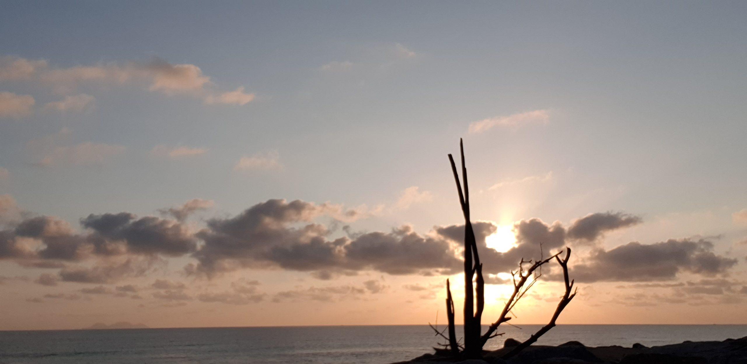 Pantai Sura, Dungun